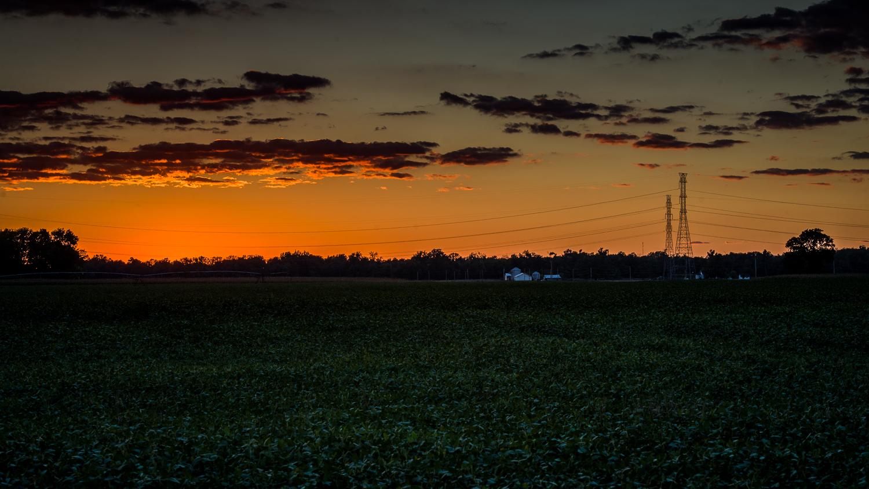 Indiana Farm Evening